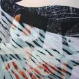 HUUR: € 55 PER MAAND Renier Vaessen Acryl 200x150cm.