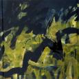 HUUR: € 9 PER MAAND Annemarie Borggreven Acryl 65x80cm